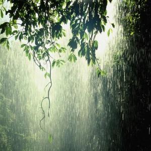 rain_photos_03