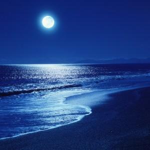 Full-Moon-Night