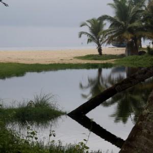 marari
