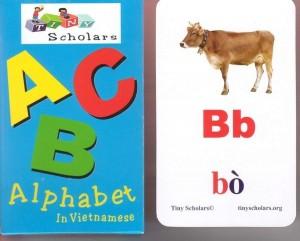fc_alphabet